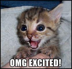 ExcitedCat1