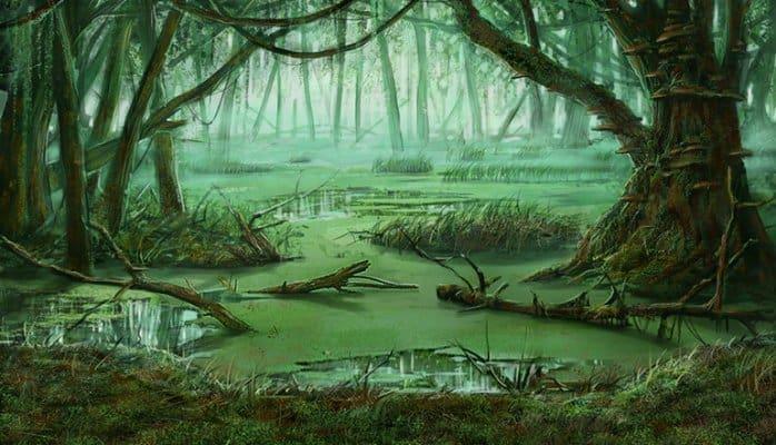 swamp hor