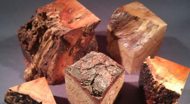 ck studios wood plinths